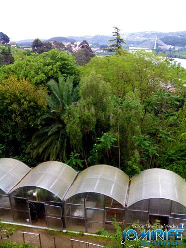 Estufas no Jardim Botânico de Coimbra [en] Greenhouses in the Botanical Gardens of Coimbra Portugal