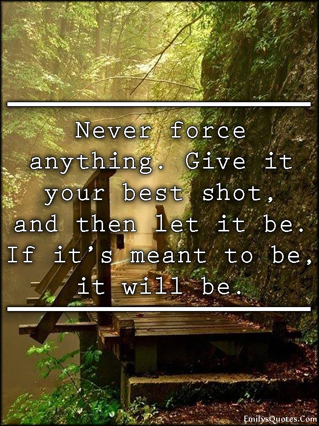 Never Force Anything Give It Your Best Shot And Then Let It Be If