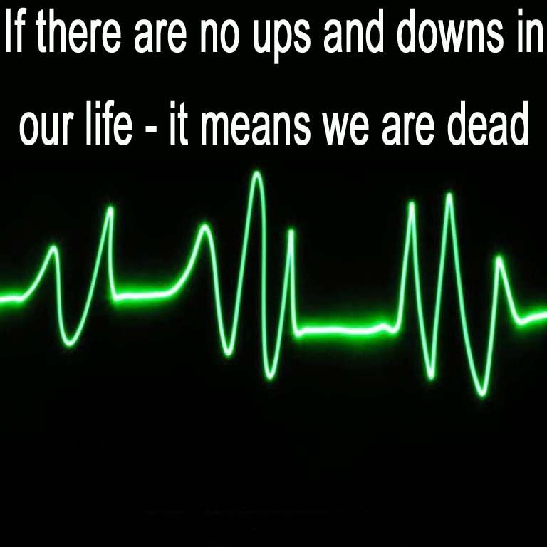 Quotes About Ups And Downs 160 Quotes