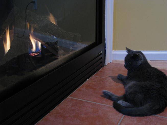 Lady Jane Grey enjoys the fire.