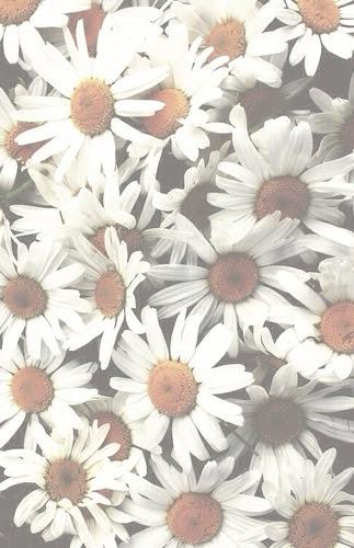 Flower Tumblr Wallpaper Sf Wallpaper