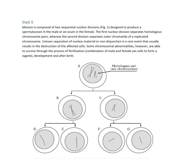 Contoh Soal Himpunan Diagram Garis - BB Contoh