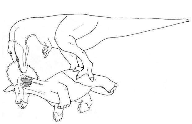 Cientistas sugerem que carne do pescoço do triceratops era nutritiva e macia, por isso preferida pelo tiranossauro (Foto: Divulgação/Nate Carroll/Denver Fowler)