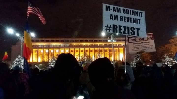 Image result for proteste cu rezist