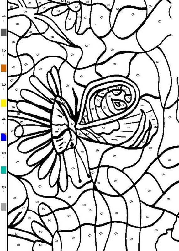 ANIMAL Color by Number coloring pages - Butterfly
