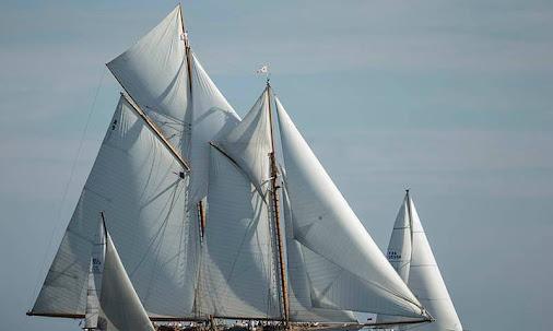 VIDEO Voiles de Saint-Tropez - toute la flotte, sur l'eau ! - ActuNautique.com