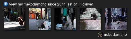 nekodamono - View my 'nekodamono since 2011' set on Flickriver