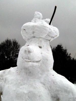 Snow Mole