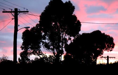IMG 3459 Armidale Dawn