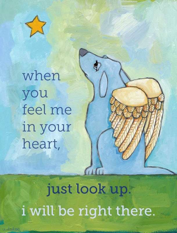 Sympathy Quote For Loss Of Dog Quote Number 561461 Picture Quotes