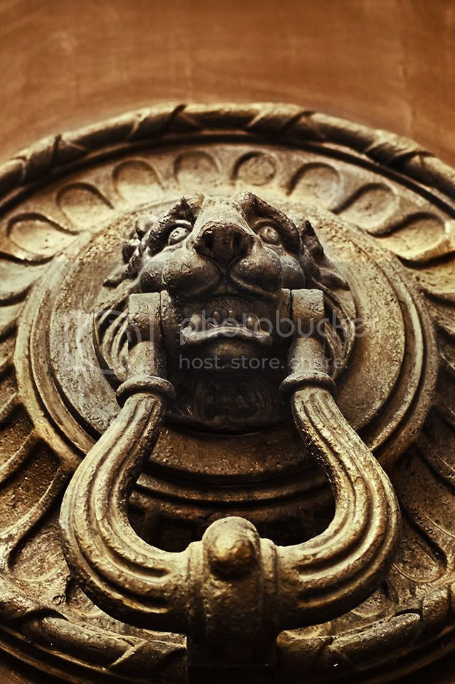 Door Knocker Detail [enlarge]