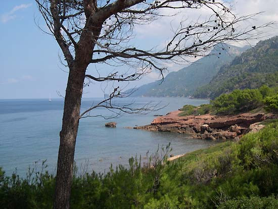 Mallorca, Port d'es Canonge