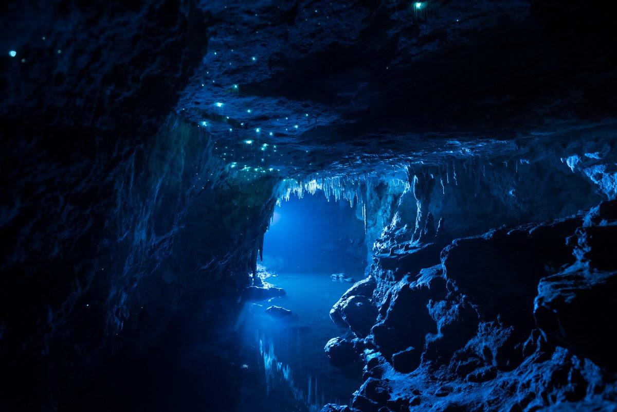 Por que a Nova Zelândia tem cavernas com tetos luminosos e brilhantes? 04