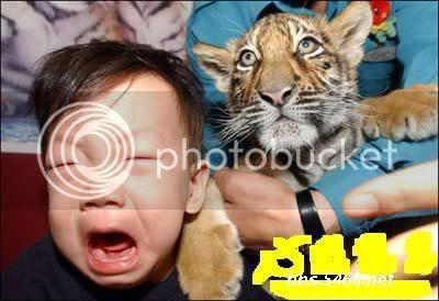i285.photobucket.com/albums/ll47/mAydLA/weird/big%20breast/cili%20ajaib/fear%20factor%20menu/funny%20pic/Ididntevenbiteyou.jpg