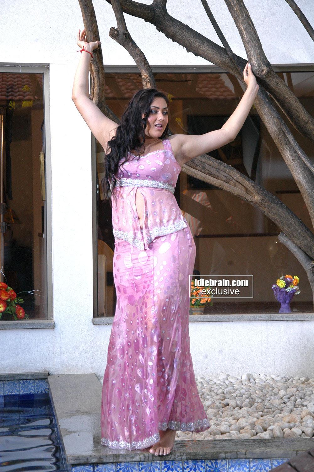 Namitha actress hot Spicy photos (24)