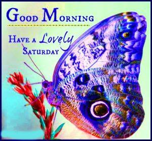 Saturday Good Morning Images Wallpaper Photo Download