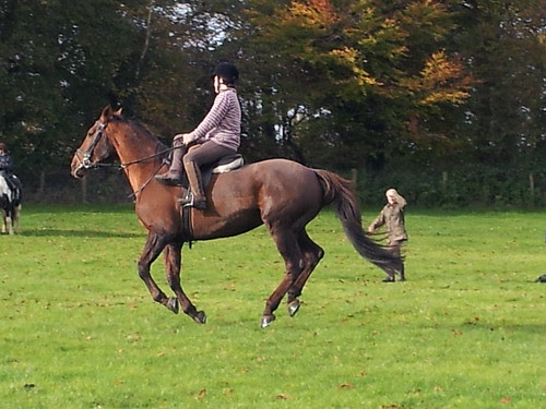 Cantering Side Saddle on Tex.