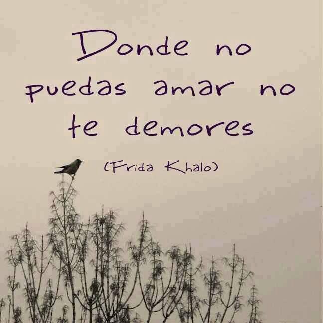 Pictures Of Frida Kahlo Quotes On Love Kidskunst Info