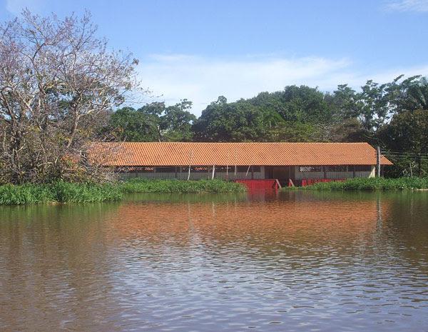 escola santarém  (Foto: Núbia Maria Ferreira Malcher/ Divulgação)