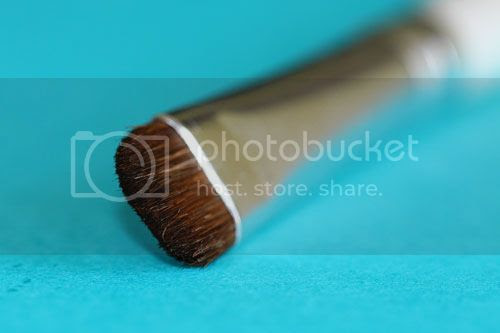 photo Elf-Essential-Eye-Shadow-Brush_zps8a2dcaed.jpg