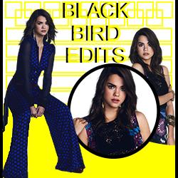 Blackbird Edits