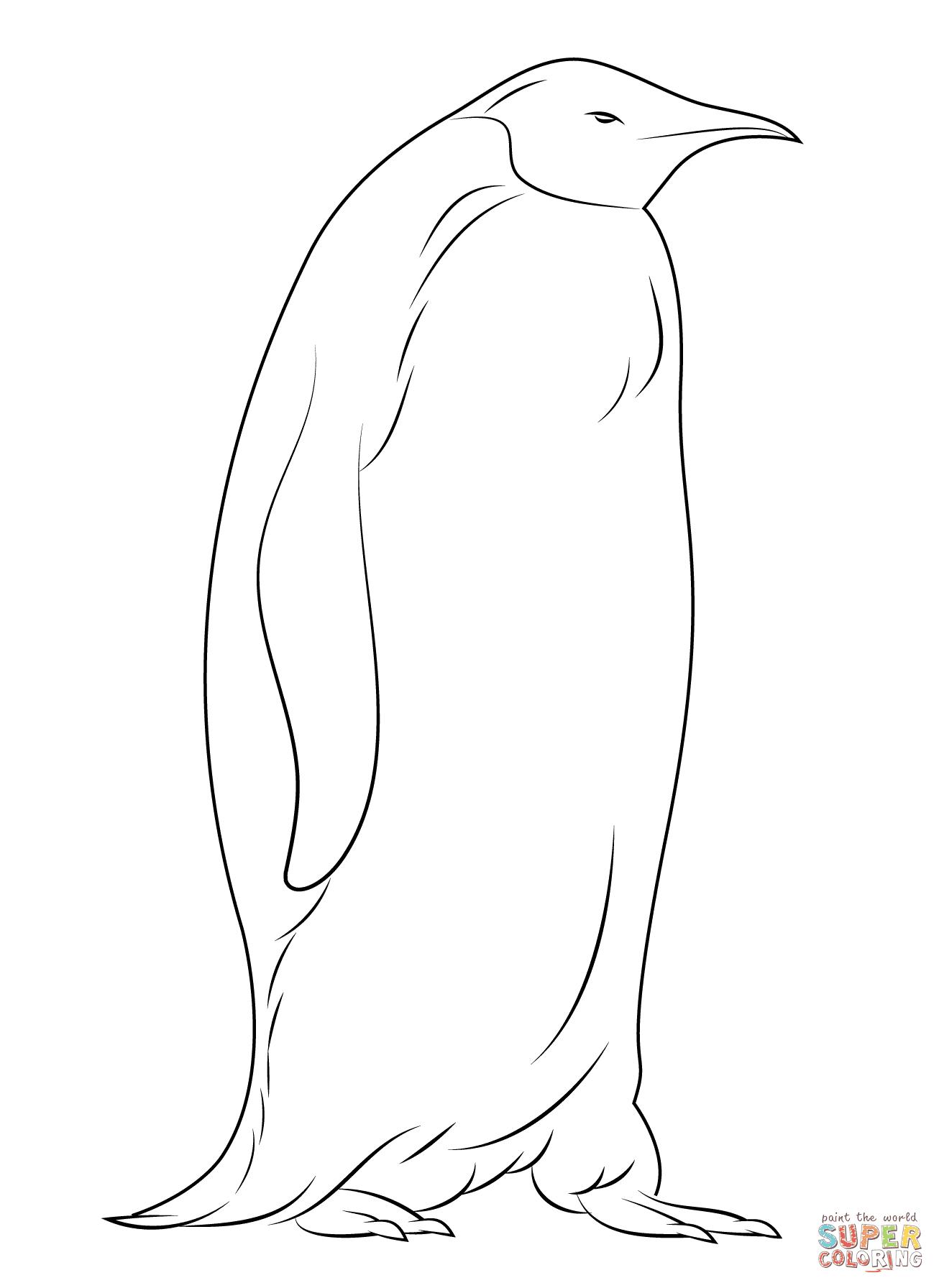 Disegni Di Pinguini Da Colorare Pagine Da Colorare Stampabili