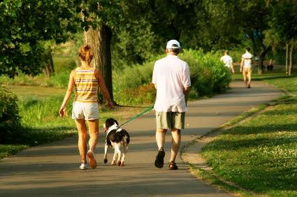 Dog-walk-park-leash