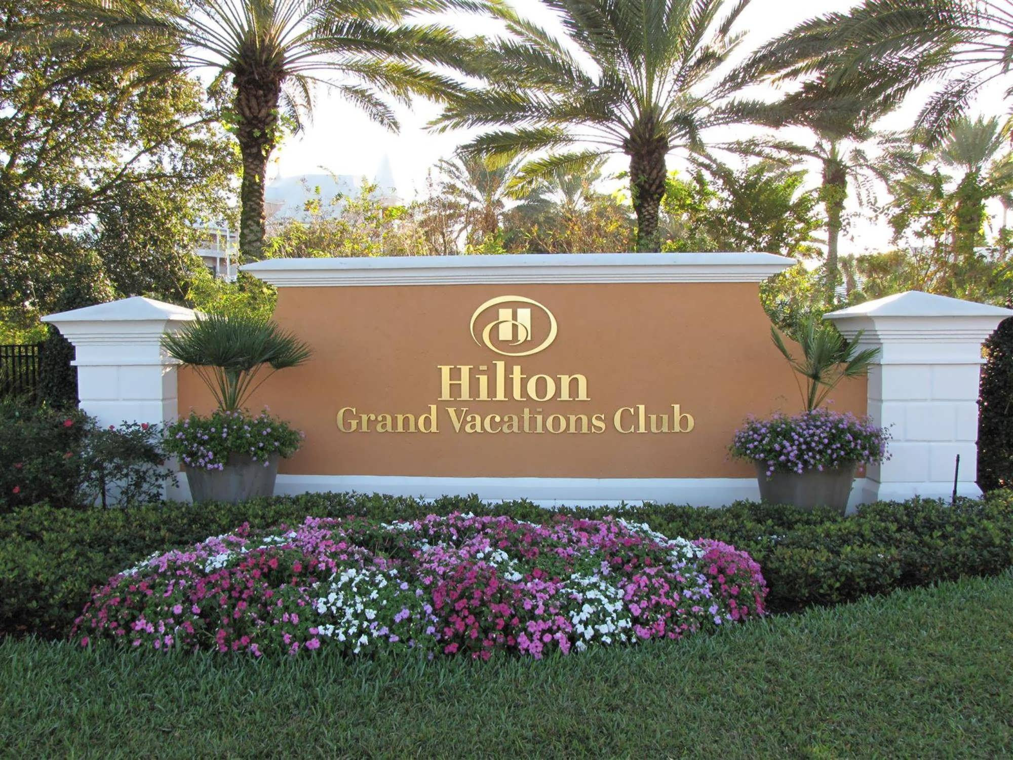 Hilton Grand Vacations Suites at SeaWorld Love at first stay
