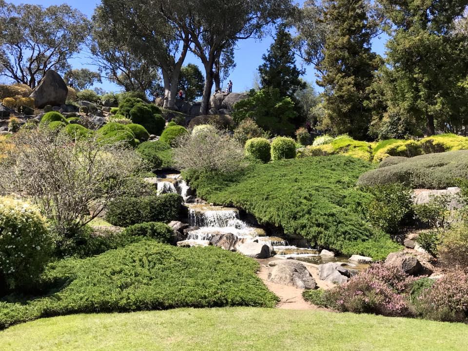 Cowra Japanese Garden Plant Listing
