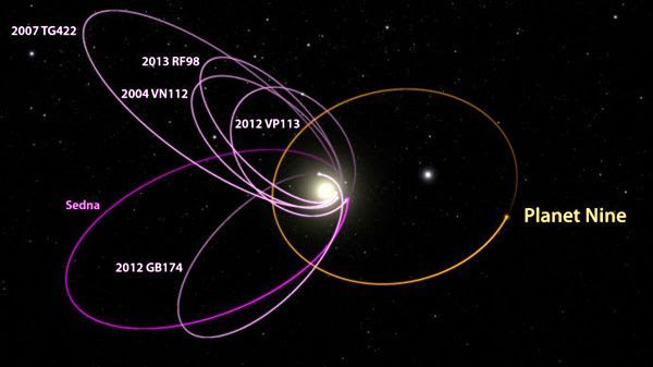 A diagram comparing the orbit of Planet Nine to those of other objects orbiting in our solar system's Kuiper Belt region.