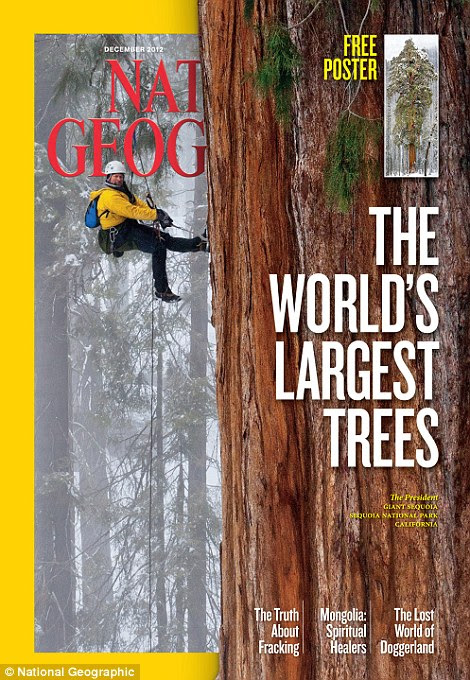 Stunning: The images of the magnificent giant sequoias are featured in the December issue of National Geographic
