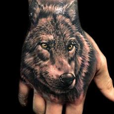 Falke Tattoos