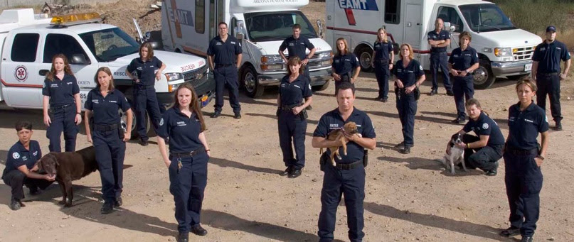 Dutch government says the country's first animal police officers are training to enforce laws protecting pets, livestock and wildlife against abuse