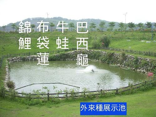 外來種展示池