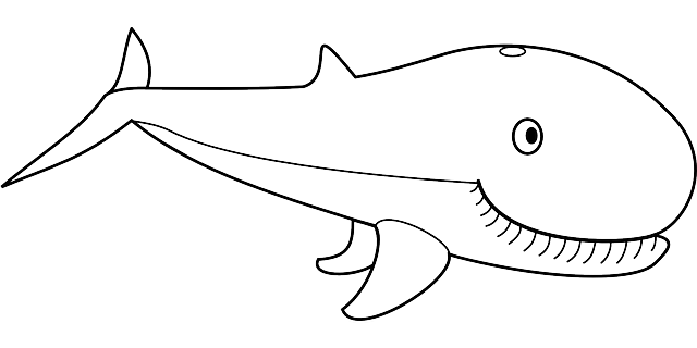 Dibujos De Ballenas Ballenapedia