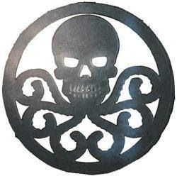 http://img3.wikia.nocookie.net/__cb20110114230945/villains/images/1/1a/Hydra_Logo.jpg