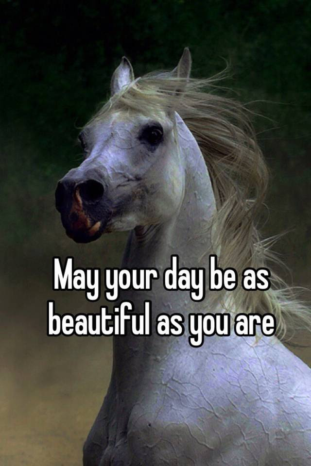 May Your Day Be As Beautiful As You Are