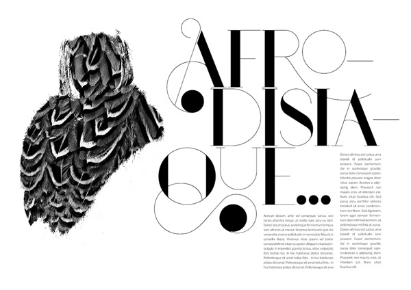 d1c8c8f0c8b7bf3a75bc256008e4e8b6 Port Typeface