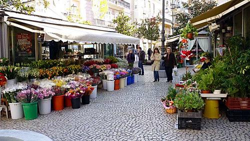 Plaza de Flores