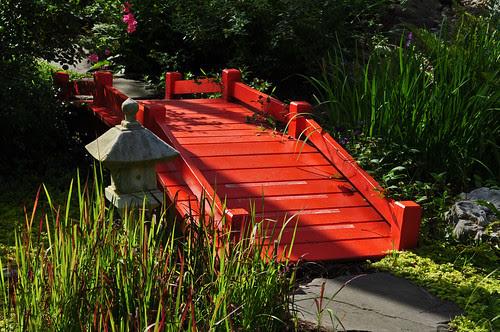 Junkin-Nickols Garden (15)