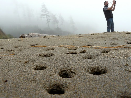 Holes In The Sand A Foggy Day At Indian Beach Ecola