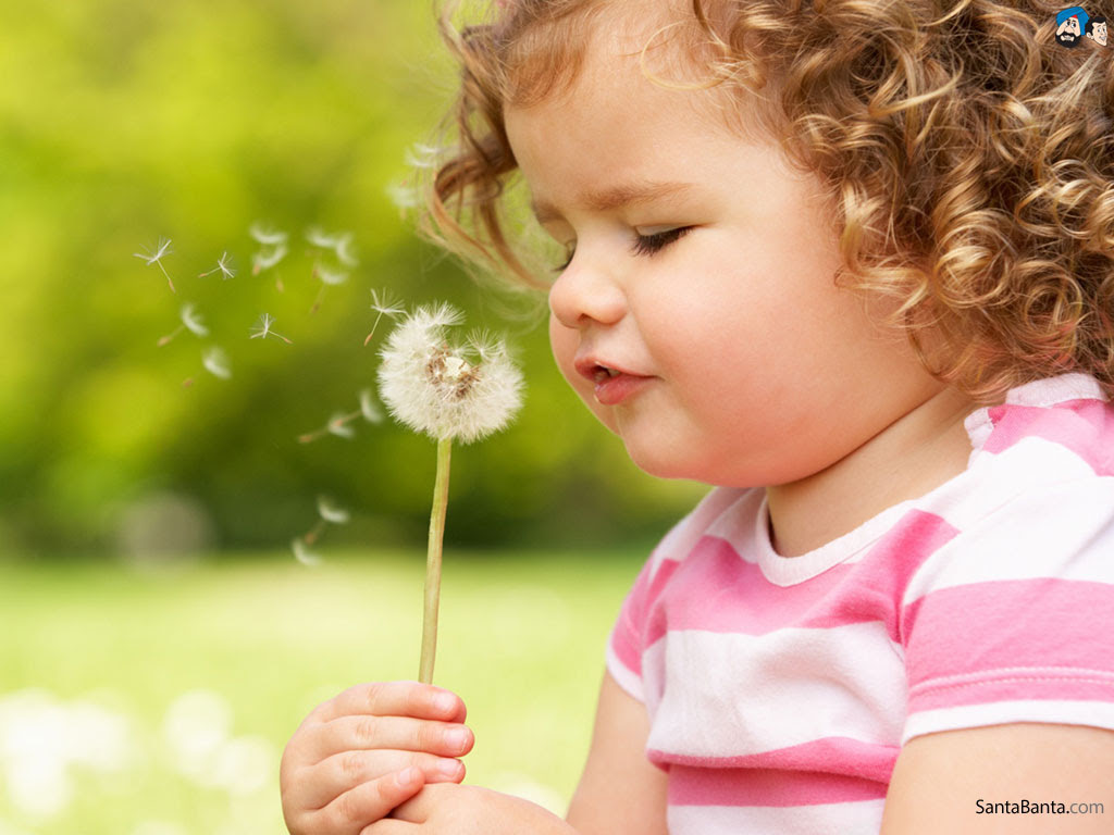 Flower Baby Pictures Wallpapers Flowers Healthy