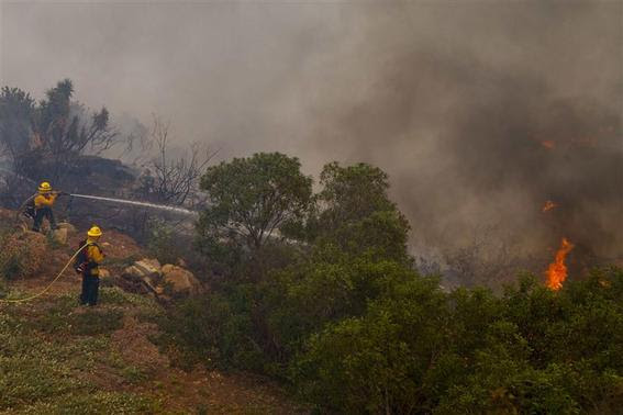 Fire crews battle the Cocos Fire in San Marcos, California, May 15, 2014. REUTERS-Sam Hodgson