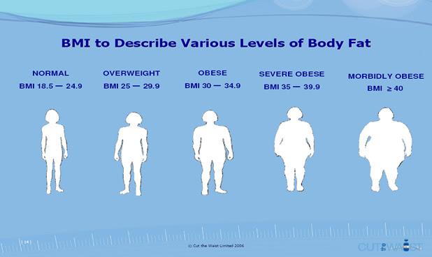body fat percentage normal range