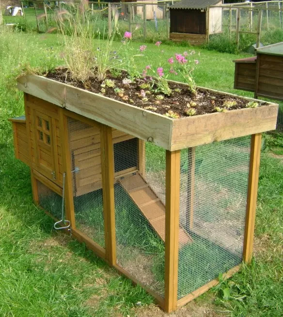How to Build a Pallet Chicken Coop: 20 DIY Plans | Guide ...