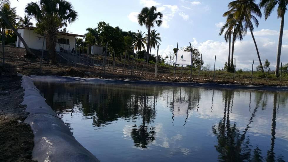 Proyecto en Gambia del español Pedro Tomás Delgado para potabilizar agua a bajo coste.