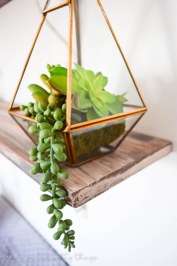 Simple DIY Succulent Arrangements That Going to Stun You Home