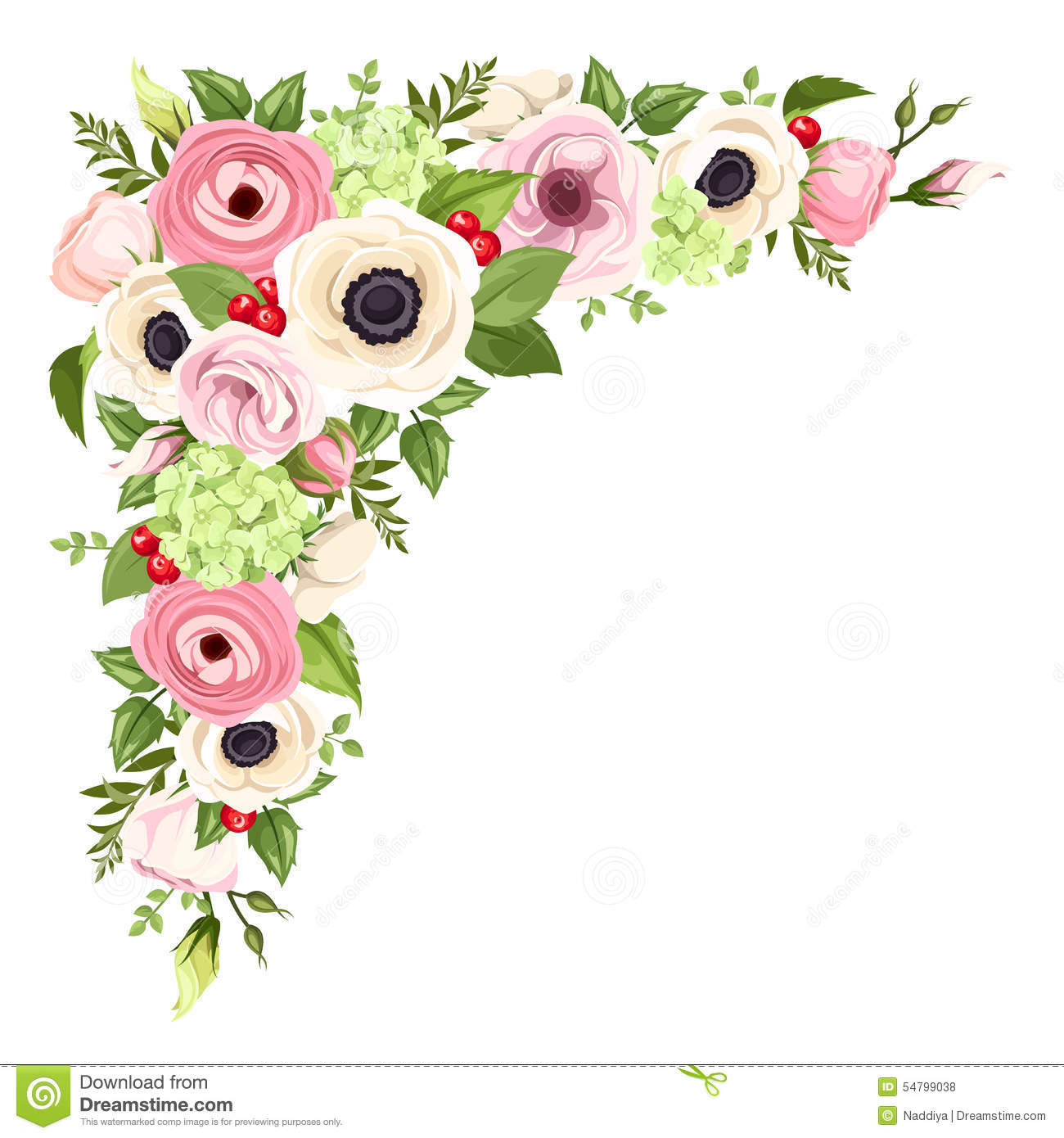 pink white anemones lisianthuses ranunculus hydrangea flowers green leaves vector corner background 54799038