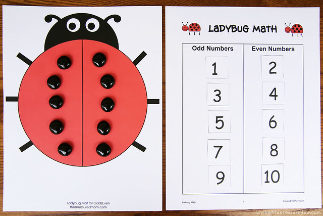 Odd and Even Ladybug Math Activity