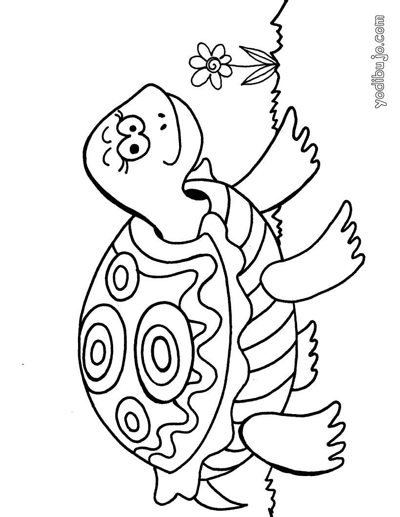 Dibujos Para Colorear Tortuga Eshellokidscom